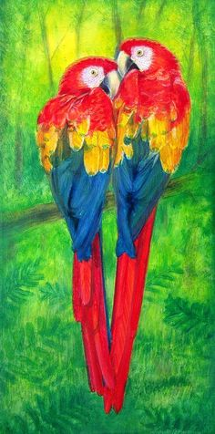 Love Birds- Macaw parrots Painting  - Love Birds- Macaw parrots Fine Art Print