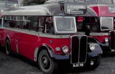 Oxford AEC Regal III No.716 (NJO 716) built in 1949