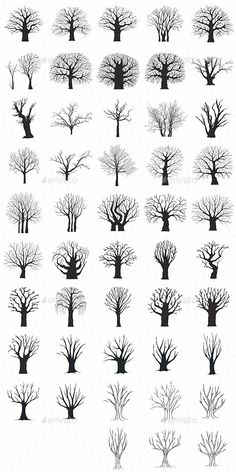 Collection of 48 Tree Silhouettes