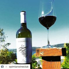 An #Italian #red is a good choice for a beautiful day.// #Repost @opimianwineclub.  Blue skies & good times // #wineclub #clubmemberphoto #regram #opimian #wine #winelover