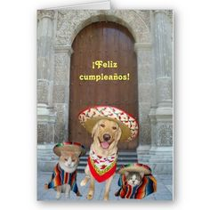 $2.95 ¡Feliz cumpleaños!   Birthday card in Spanish featuring dogs and cats.