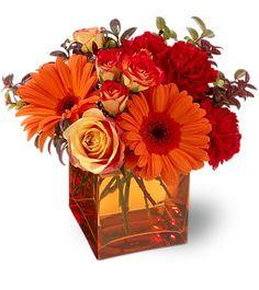Centros de mesa y arreglos florales a toda hora                                                                                                                                                     Más