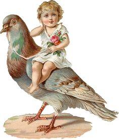 Victorian Die Cut of Child on a Pigeon Vintage Abbildungen, Vintage Ephemera, Vintage Girls, Vintage Paper, Vintage Children, Vintage Prints, Clipart Vintage, Style Vintage, Vintage Pictures