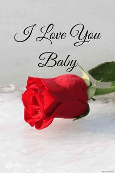 i love you baby with red rose hd pic I Love Her Quotes, Good Morning Love Messages, Morning Love Quotes, Good Morning My Love, Good Morning Wishes, Romantic Love Quotes, Love Yourself Quotes, Good Morning Images, Unique Quotes