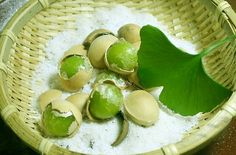 Ginkgo Biloba: A Healthy Supplement with Centuries Long History