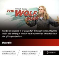 Shaun Ellis  Vahşi bir kurt sürüsü ile 18 ay yaşayan Kurt davranışları bilimcisi. Shaun Ellis kurtlara özgü davranışları bir insan olarak mükemmel bir şekilde kopyalayan onlar gibi uluyan süper insan.