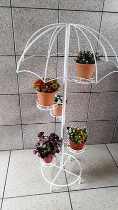 Metal Plant Stand, Diy Plant Stand, House Plants Decor, Plant Decor, Metal Garden Gates, Indian Garden, Wrought Iron Decor, Flower Pots, Flowers