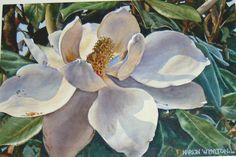 http://www.marionwhylton.com/images/Morning_Magnolia.JPG