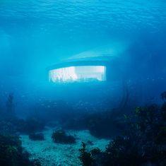 Dine Under the Sea in Norway's First Underwater Restaurant