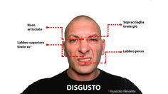 Muscoli rivelatori nell'espressione dell'emozione di disgusto. Guarda altro qui: http://www.stefanoferruggiara.com/training-on-line-emozioni-ed-espressioni/