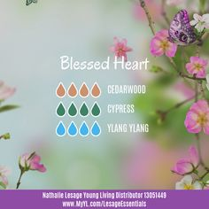 I created this new blend today to use during my bible reading time. It's floral with woodsy scent, and very relaxing and calming. Using Cedarwood and Cypress, two oils and woods mentioned in the Scriptures makes me feel more connected. I love this new diffuser blend!