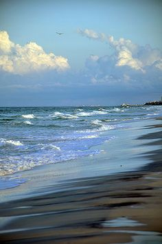 Morning walk on the beach... by Robin~All Things Heart and Home, via Flickr