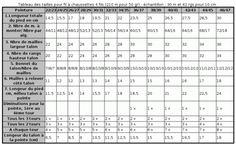 Principe de base pour tricoter des chaussettes | Tricofolk Periodic Table, Knitting, Socks, Points, Tour, Hands, Craft, Boot Socks, Plastic Canvas