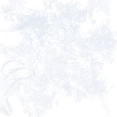 frost overlay ❤ liked on Polyvore featuring effects, overlays, backgrounds, winter, texture, fillers, phrase, borders, quotes and saying