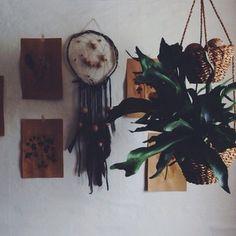 Roser og patina instagram photo