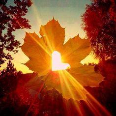 Beautiful sun light