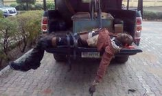 Welcome to Oghenemaga Otewu's Blog: Graphic pic: Delta state police command gun down s...
