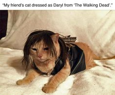 For all of my friends who are fans of Daryl in The Walking Dead. LOL!!! Nailed it!