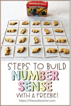 Help build number sense in your math class with your upper elementary students with these steps and grab a freebie to get started. Teaching Social Studies, Teaching Writing, Teaching Tips, Upper Elementary Resources, Elementary Math, Kindergarten Math, Algebra Problems, Math Strategies, Student Motivation