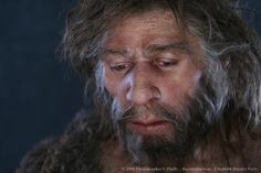 Reconstruction of Neanderthal male found at Shanidar cave in northern Iraq, by Elisabeth Daynès Vikings, Early Humans, Human Evolution, Archaeological Finds, Science, Before Us, Bored Panda, Anthropology, Oeuvre D'art