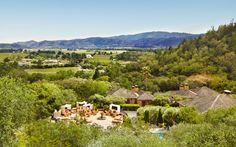 Classic California vineyard.