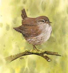 Lovely bird painting