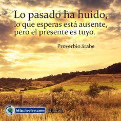 Lo pasado ha huido, lo que esperas está ausente, pero el presente es tuyo. Proverbio árabe. http://selvv.com/dilacion/