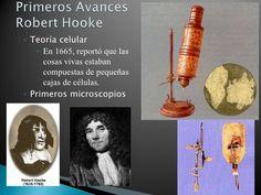 <ul><ul><li>Teoría celular </li></ul></ul><ul><ul><ul><li>En 1665, reportó que las cosas vivas estaban compuestas de peque...