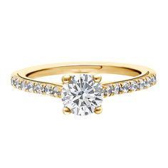 Round brilliant with diamond band in white, yellow or rose gold and platinum. Or Rose, Rose Gold, Let's Get Married, Diamond Bands, Dublin, Engagement Rings, Brilliant Diamond, Jewelry, Enagement Rings