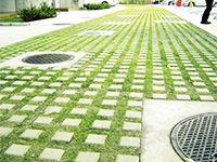 緑化舗装(ジオグリーン/ジオグリーンex)   構工法/技術情報   太陽セメント工業