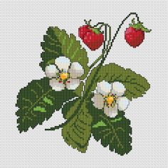 Strawberry Bouquet, free cross stitch pattern from Alita Designs