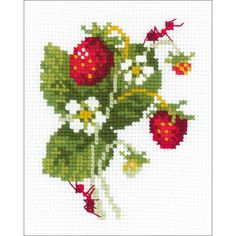 """Wild Strawberry Counted Cross Stitch Kit - 5.25"""" X 6.5"""" 10 Count"""