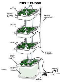 How to Build Indoor Hydroponic Gardens Using IKEA Storage Boxes #hydroponicgardeninghowtobuild #indoorgardeninghydroponics #hydroponicgardenhowto