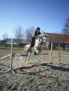 Dit is mijn sport paardrijden en vooral springen. Als ik vrij ben kan je me altijd tussen de paarden vinden.