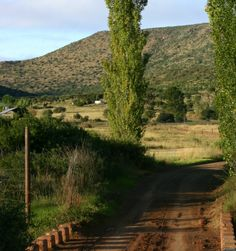 The start of the karoo in the Eastern Cape, South Africa. This is near Queenstown and a place where I love to paint in peace and quiet.
