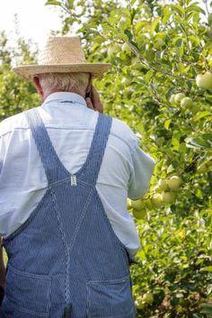 Grandpa S Orchard