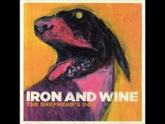 Iron and Wine - Lovesong of the Buzzard. The song for the one person I said I loved and actually meant it.