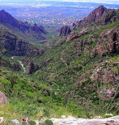View from Ventana Canyon Tucson
