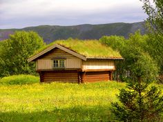 Very old Norwegian storehouse.. | Flickr - Photo Sharing!