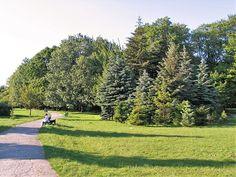 Park Zrodliska Lodz 1 - Kalendarium historii Łodzi (1821–1918) – Wikipedia, wolna encyklopedia