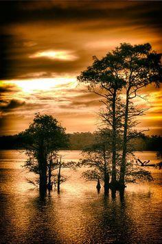 Sunrise ove de Pasquotank River in Elizabeth City, North Carolina_ USA Amazing Photography, Landscape Photography, Nature Photography, Beautiful World, Beautiful Places, Beautiful Sky, Seen, Amazing Nature, Pretty Pictures