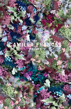 Camilla Frances is a individual print creator, leading a team that combines unique, personal design sensibilities with traditional hand drawing techniques to craft an ever-growing world of prints. Graphic Design Posters, Graphic Patterns, Print Patterns, Color Patterns, Textile Prints, Textile Patterns, Flower Patterns, Art Prints, Botanical Prints