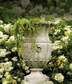 ~ urnspiration green and white garden urn with creeping jenny white hydrangea