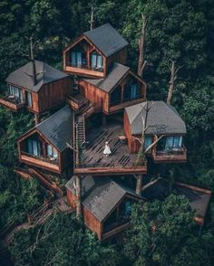 house, tree, sky and outdoorYou can find Boutique hotels and more on our website.house, tree, sky and outdoor Future House, My House, Cool Tree Houses, Crazy Houses, Bird Houses, Design Exterior, Tree House Designs, Forest House, Forest Cabin