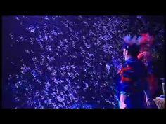 Ana Yang Gazillion Bubble Show - YouTube