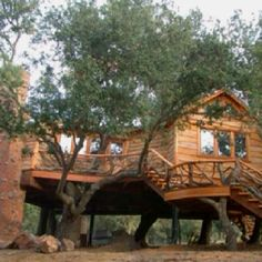 Супер дом на деревьях .