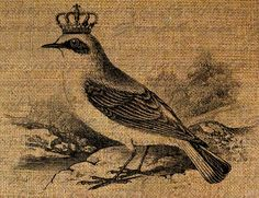 Burlap Digital Download Queen Bird With Crown by Graphique on Etsy, $1.00