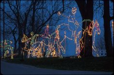 "The Southern Lights are on display at the Kentucky Horse Park from now until December 31st. This year's display will include several basketball-themed light displays celebrating the 2012 NCAA Champion UK Wildcats in addition to the traditional ""Christmas Village,"" ""12 Day of Christmas,"" ""Keeneland Race Track"" and other displays."