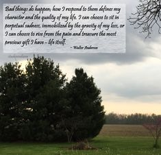 """Bad things do happen; how I respond to them defines my character and the quality of my life. I can choose to sit in perpetual sadness, immobilized by the gravity of my loss, or I can choose to rise from the pain and treasure the most precious gift I have - life itself."" ~ Walter Anderson #quote"