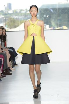 Delpozo RTW Spring 2015 [Photo by Rodin Banica]
